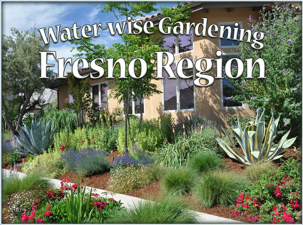 Awesome Water Wise Gardening Fresno Region